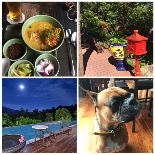 Khao Soi, antique postbox, Lincoln the Boxer dog and full moon vistas
