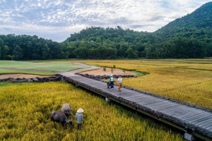 Vietnam's golf scene offers a unique combination of top-quality layouts and striking local characteristics