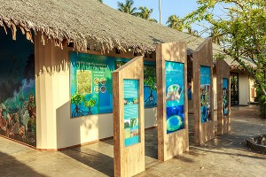 Led by a resident marine biologist, the resort's Marine Discovery Centre is an important educational hub